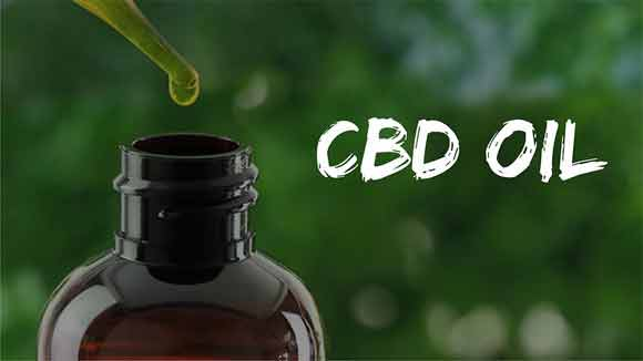 Can CBD oil make you high