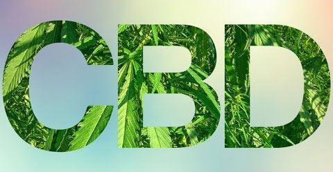 Medicinal uses of CBD oil