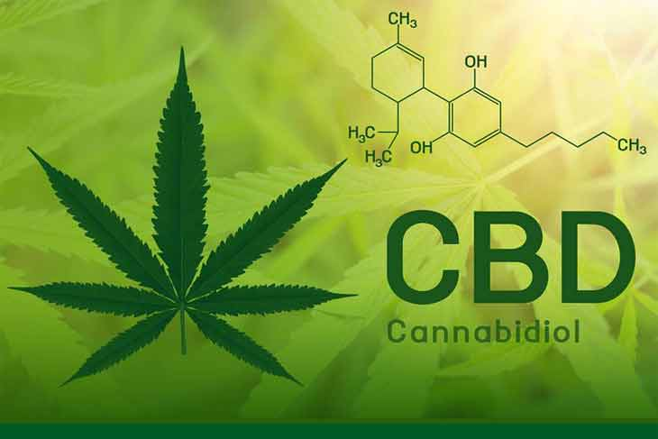 How Long Does Cbd oil Stay Good