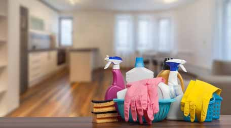 Hiring A Professional Household Service