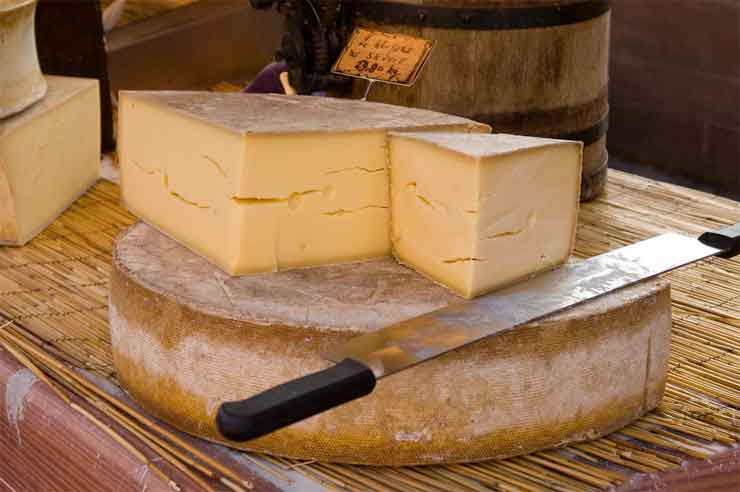 What can you Substitute for Gruyere Cheese?