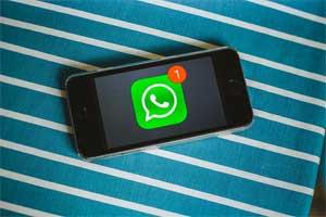 Whatsapp Business Version