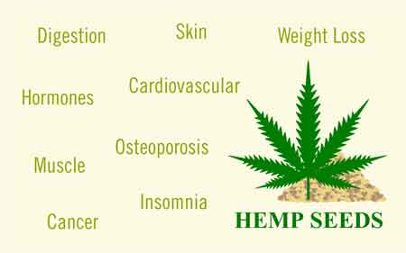 How does CBD oil works for weight